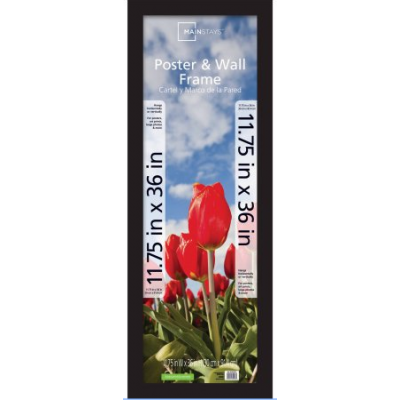 Poster Picture Frame 12x36 Inch